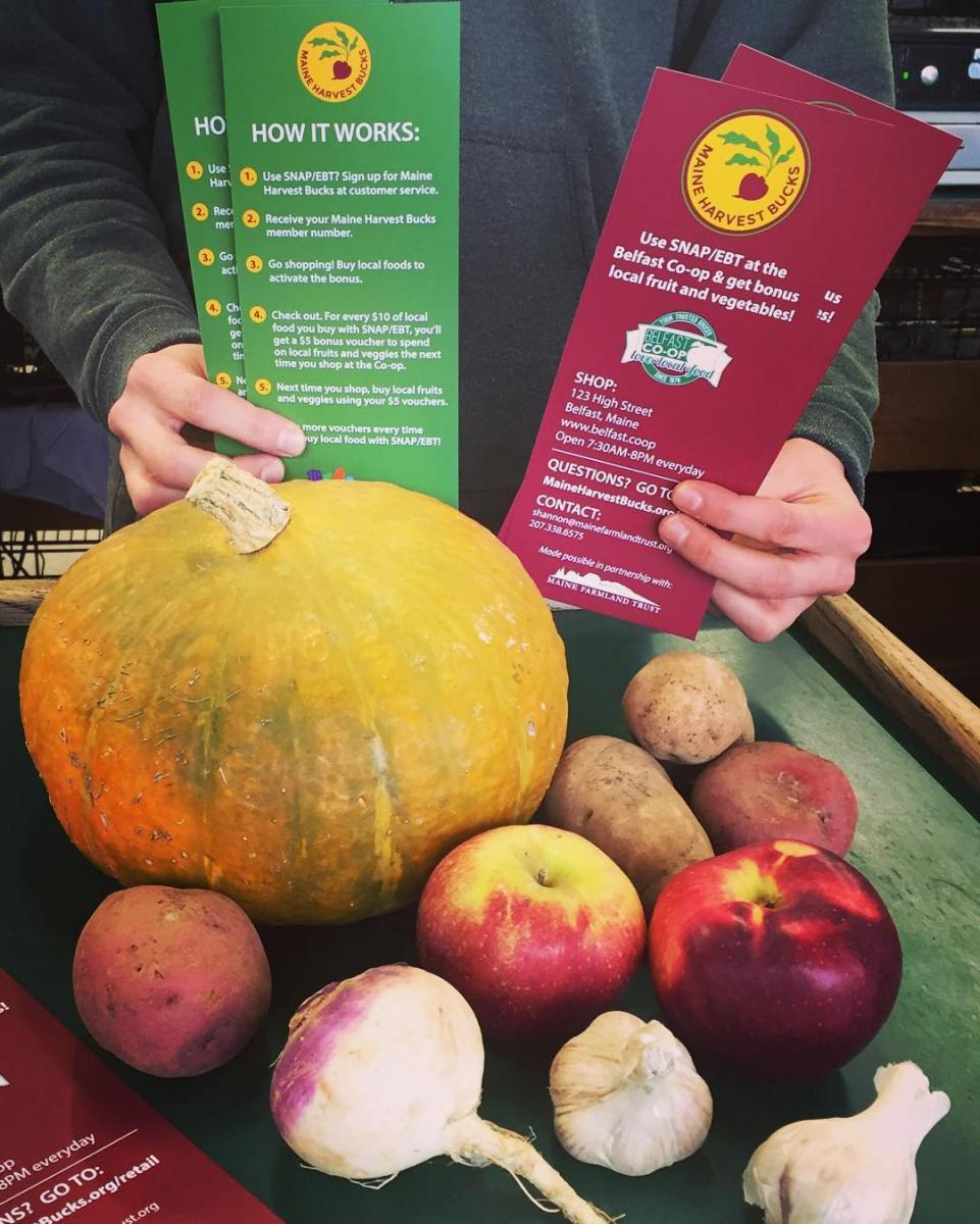 Maine Harvest Bucks pamphlets and produce at Belfast Coop